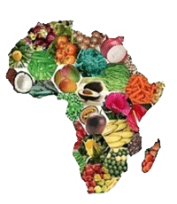 Martin pasquier innovation is everywhere mfarm kenya afrikoin nairobi connected agriculture africa agribusiness food map