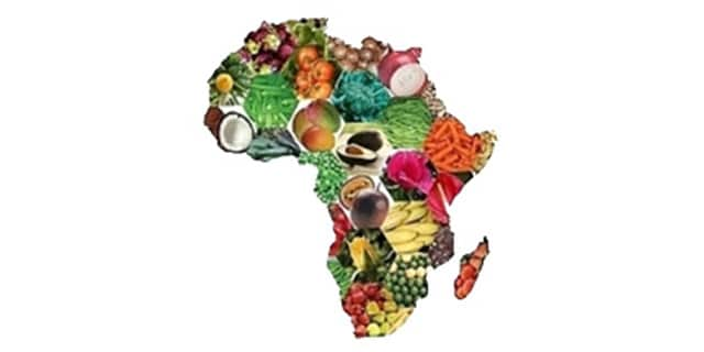 Real-time stock price for African farmers: a case study of connected agriculture with M-Farm in Kenya